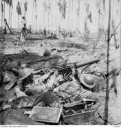 BUNA, PAPUA. 1943-01-01. FIGHTING DURING THE FINAL ASSAULT ON BUNA. AUSTRALIAN MACHINE GUNNERS IN ACTION AROUND 5.30 PM NEW YEARS DAY. DEAD MAN ON LEFT WAS CORPORAL CHARLES KNIGHT. PRIVATE JOHN SENIOR IS BEHIND THE GUN AND TX678 SERGEANT G.C. LOWE ON THE RIGHT. THIS PHOTOGRAPH WAS TAKEN DURING THE ACTUAL FIGHTING.