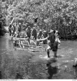 BUNA-GONA AREA, NEW GUINEA. 1942-10. MEMBERS OF 2/6TH AUSTRALIAN INDEPENDENT COMPANY CROSSING ONE OF MANY CREEKS BETWEEN WANIGELA AND PONGANI, ACTING AS ADVANCE PARTY DURING THE FIRST MOVE FORWARD WHICH WAS TIMED TO BRING THE UNITED STATES FORCES IN THE AREA INTO POSITION ALONG THE COAST TO ATTACK THE JAPANESE STRONGHOLD. SIMULTANEOUSLY THE AUSTRALIANS WERE BEATING THE ENEMY BACK DOWN THE OWEN STANLEY TO WAIROPI. THE COMPANY WAS THE ONLY UNIT TO COMPLETE THE MARCH.