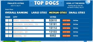 """Vote tally in the """"medium cities"""" category as of July 8. Voting ends July 31."""