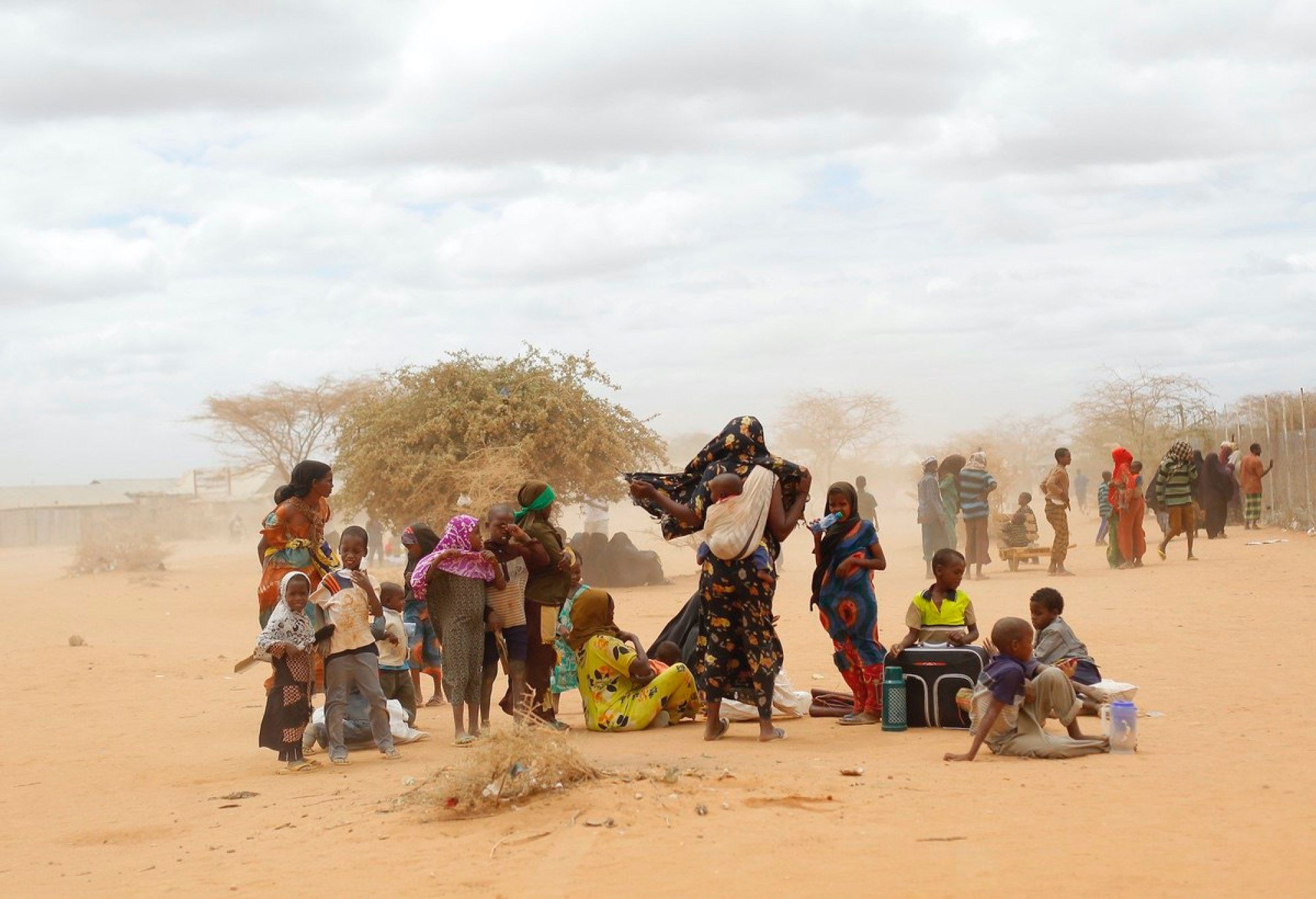 Newly arrived Somali refugees wait outside a UNHCR processing center at the Ifo refugee camp outside Dadaab, eastern Kenya, 100 kilometers (62 miles) from the Somali border. Human-induced climate change contributed to low rain levels in East Africa in 2011, making global warming one of the causes of Somalia's famine and the tens of thousands of deaths that followed, a new study has found—Aug. 5, 2011 (AP Photo/Jerome Delay)