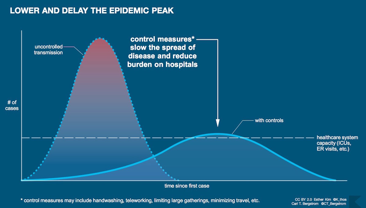 Epidemic infographic created for the COVID-19 pandemic that demonstrates the benefits of slowing transmission – March 7, 2020. (Esther Kim and arl T. Bergstrom/Creative Commons)