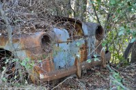 ranwhenparked-renault-4cv-woods-12