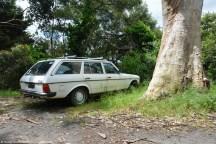 ranwhenparked-mercedes-benz-300td-13