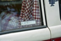ranwhenparked-volkswagen-bus-driven-daily-14