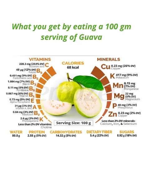 Guava-the poor man's apple-fruits to help you get great health