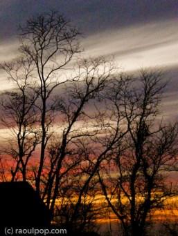 Twilight colors