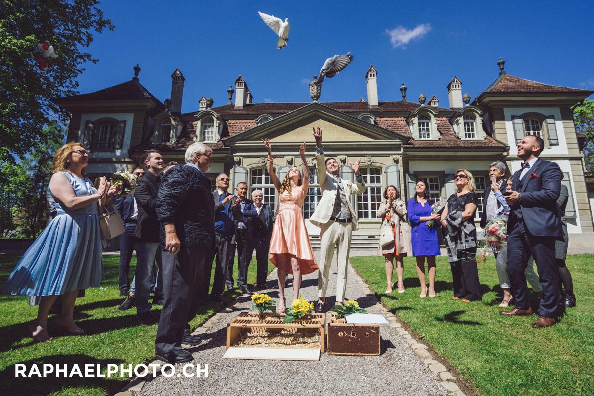 Hochzeitsfotografie Tauben beim Schloss Bümpliz