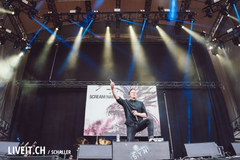Scream your Name am Greenfield 2018-2