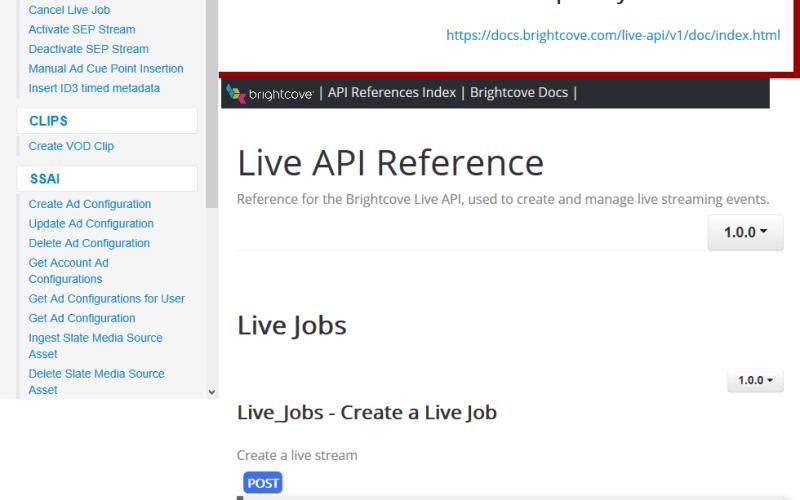 Brightcove Live API
