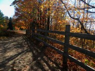 Fence at the Deadman's Hill overlook
