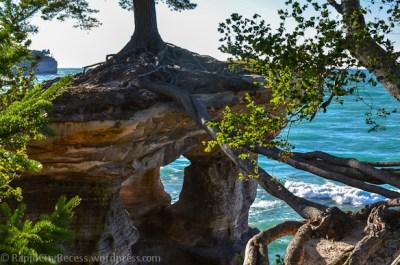 Pictured Rocks - Chapel Rock-root span