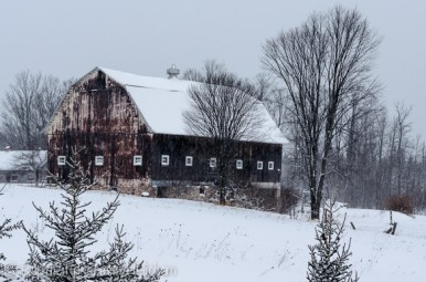 Barn along the highway