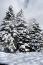 snow flying