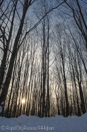 Lovely winter gradient