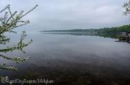 silky Torch Lake