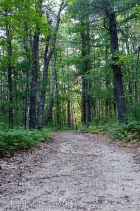 Sand Lakes trail
