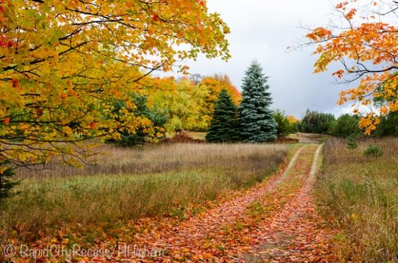 fall lane