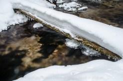 Rapid River intimates-7