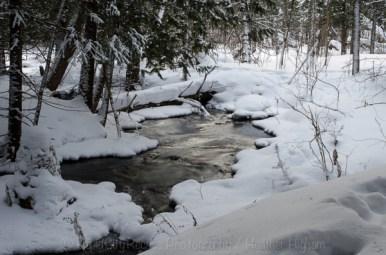Rapid River intimates