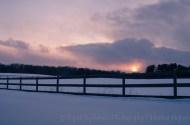 snow day-7