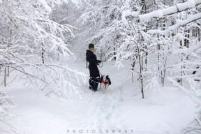 fresh snow-16