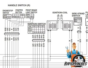 2004 Harley Dyna Service Repair Manual | RapidManuals