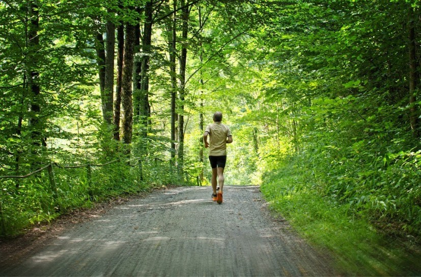 Jogging Healthy Sporty Jog Sport Leisure Run