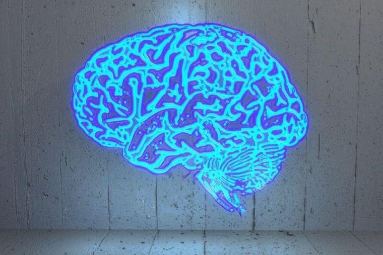 HighIQPro - brain