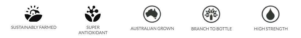 wellgrove - benefits