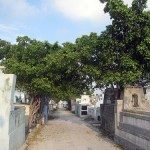Grand Cemetery of Port-au-Prince – Christian and Vodou celebrations of life and death