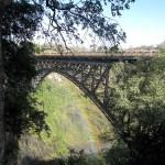 Victoria Falls Weekend: Wharthog groundskeepers and night safari