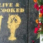 Maine Lobster Shacks