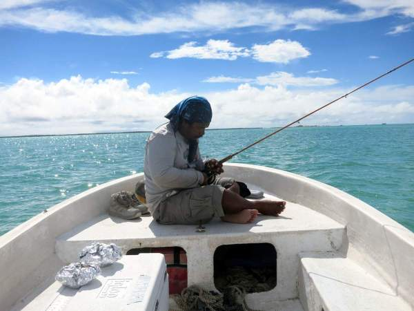 Ikari House Fishing Guide