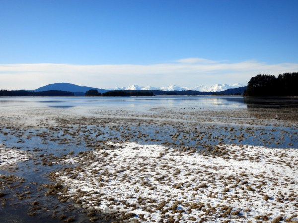 Juneau Marsh