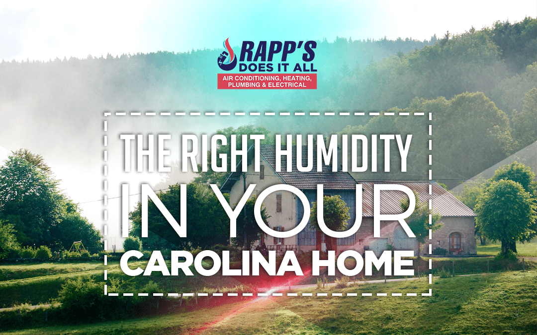 Ideal Humidity Level In Your Carolina Home