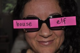 House Elf! - diaryofahouseelf.wordpress.com