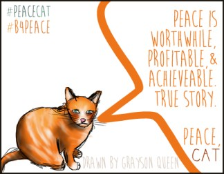 #peacecat, PeaceCat, Bloggers4Peace, B4Peace, Grayson Queen, Rarasaur