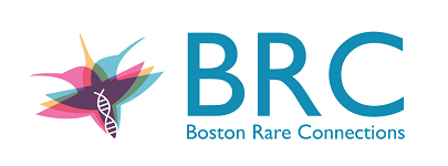 Boston Rare Connections