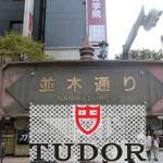 TUDORの歴史と本気度を考察する
