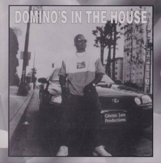 dominos-in-the-house
