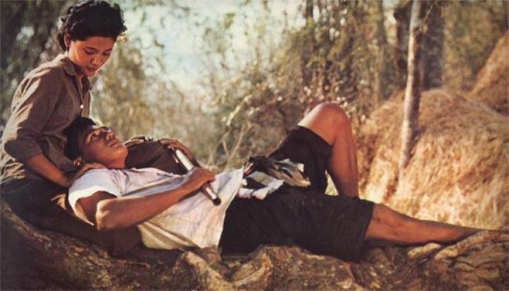 แผลเก่า (1977)