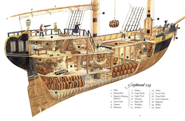 PirateDiary – ship diagram | Rarest Kind of Best