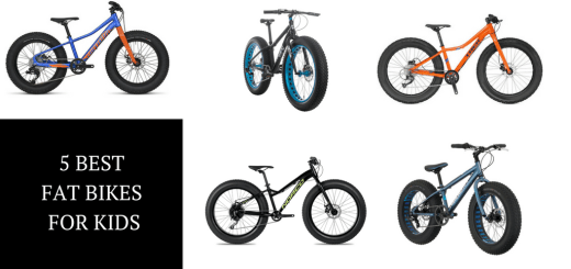 The 5 Best Fat Bikes for Kids