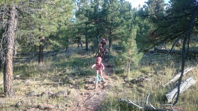 Flaming Gorge - Red Canyon Trail