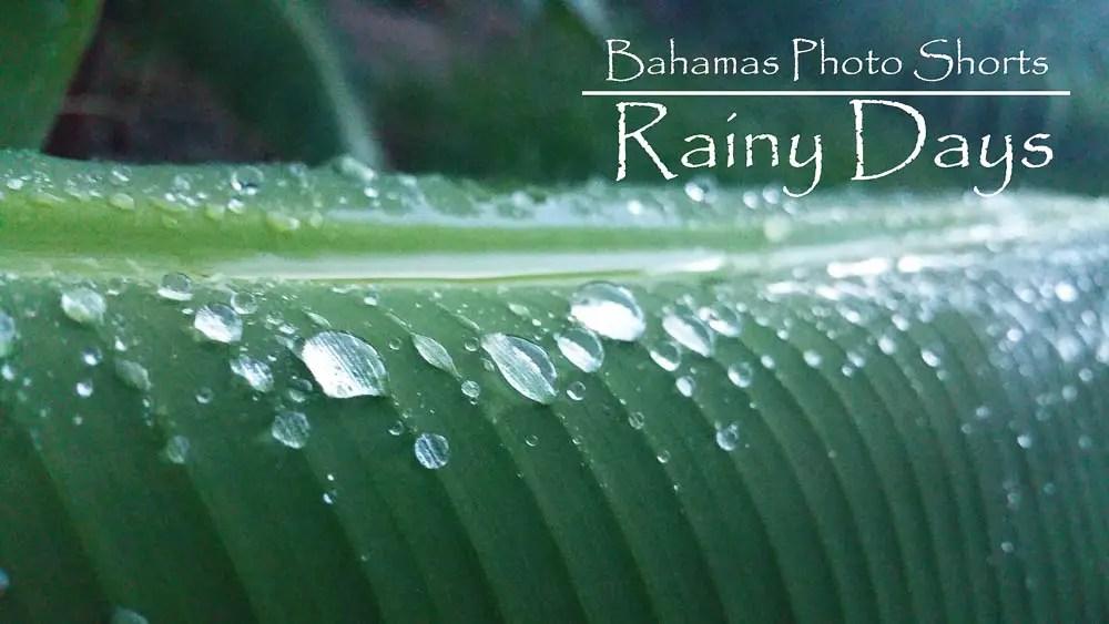Bahamas Photo Shorts – Mobile Photography