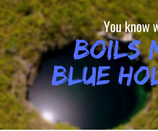 Boil my Blue Hole – The Receptionist