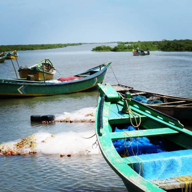 Fishing scenes Andhra Pradesh country side instalike instapic andhrapradesh boathellip
