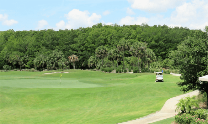 One among the many golf courses in Naples