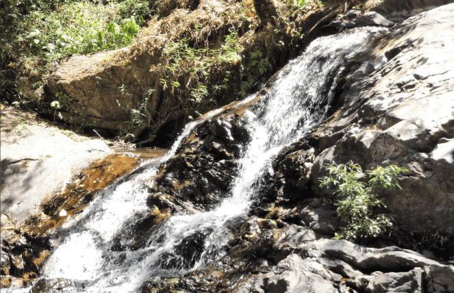 Irupu Falls in Coorg