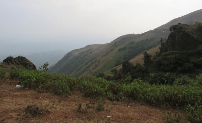 A view of Mullayanagiri, Chikamagalur